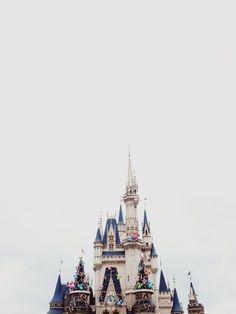 Tokyo Disneyland.