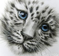Face of a Adorable Clouded Snow Leopard Cub. Leopard Tattoos, Animal Tattoos, Realistic Animal Drawings, Pencil Drawings Of Animals, Leopard Cub, Snow Leopard, Leopard Eyes, Desenho Tattoo, Cat Photography