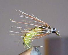 Rhyacophila pupa - material list provided