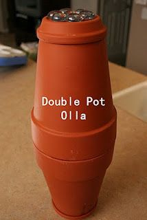 Make an olla - this is a plant watering system which, when buried in the ground, will water your plants in dry weather. Very cool! From Aiming Low Teach