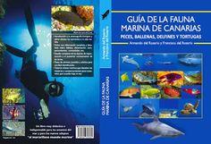Guía de la fauna marina de Canarias : peces, ballenas, delfines y tortugas / Armando del Rosario y Francisco del Rosario. http://absysnetweb.bbtk.ull.es/cgi-bin/abnetopac01?TITN=524828