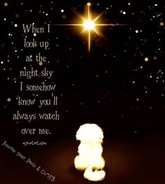 When I look up at the night sky, I somehow know you'll always watch over me.
