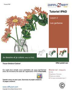 Apprendre à dessiner avec un IPAD et l'application Procreate, Leçon 2