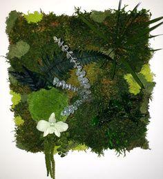 Tableau Végétal Stabilisé 40 x 40 cm (cadre mur décoration végétale) Flower Decorations, Dandelion, Crafty, Plants, Etsy, Design, Art, Green, Wall Of Frames