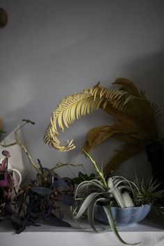 Creative Vegetation, Plant, and Interior image ideas & inspiration on Designspiration Ikebana, Garden Cactus, Moss Garden, Succulent Planters, Succulents Garden, Hanging Planters, Decoration Plante, Pot Plante, Green Plants