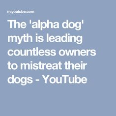 The 'alpha dog' myth is leading countless owners to mistreat their dogs - YouTube