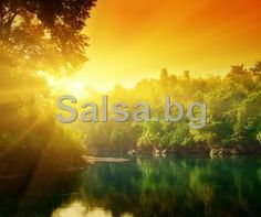 Picture of sunset in jungle of Thailand stock photo, images and stock photography. Proverbs 4 23, Book Of Proverbs, Free Email Birthday Cards, Christian Ecards, Scripture Pictures, Living Water, Get Out Of Debt, E Cards, Greeting Cards