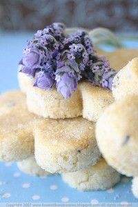 Lavender Shortbread-perfect for afternoon tea. Tea Cakes, Cookie Recipes, Dessert Recipes, Lavender Recipes, Cookies Et Biscuits, Shortbread Cookies, High Tea, Afternoon Tea, Just Desserts