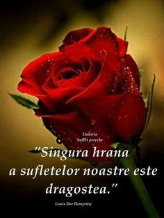 .....Iar ....DRAGOSTEA MEA!!..pentru..TINE!...este ...IMENSA!!...a unui om.care .....TE IUBESTE...MAI MULT CA ORCINE!!...si...ORICE!!! I Love You, My Love, My Notebook, Facebook Image, Motivational Quotes, Youtube, Alba, Life, Merry