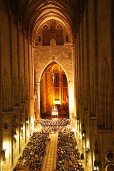 Das Ulmer Münster - der höchste Kirchturm der Welt