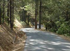 The El Dorado Ranch / Family Retreat Vacation Rental in Mountain Ranch, CA #vacation #rental #travel #weddings #eldoradoranch (driveway)