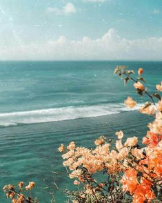 Wonderful Photo tropical vacation Strategies For the decision to an Aesthetic-Plastic Surgery or alleged plastic surgery, there are many, individ Nature Aesthetic, Beach Aesthetic, Flower Aesthetic, Summer Aesthetic, Aesthetic Photography Nature, Vintage Nature Photography, Summer Nature Photography, Aesthetic Collage, Travel Aesthetic