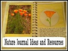 There are no right or wrong ways to keep a nature journal. The main point of a nature journal is to keep a personal account of your experiences outdoors whether you sketch or write about it.