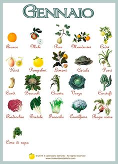 ✔ Gennaio / January vegetables