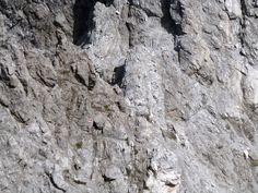 Ruitelspitze  Gipfel 2 Klettersteig