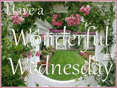 have a wonderful Wednesday y'all!