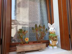 Burano--I'm always drawn to these windows with their flower boxes--this one had a fake rabbit--think the residents have a lovely sense of humor.