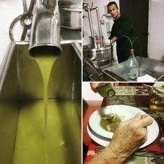 2017 Pornanino Green Gold has arrived!!!!!!!!!!!! #pornanino #chianti #chiantigreengold #delicious #eat #eatwhatyougrow #eatclean #extravirginoliveoil #farm #farmtotable #fresh #growyourownfood #harvest #healthy #healthyeating #healthyfood #olive #oliveoil #organic #organicfood #photooftheday #photo #vegan — in Pornanino.