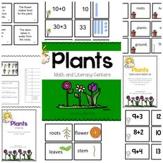 Plant unit with Literacy, Science, Math and more!