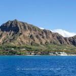 Snorkeling with Hawaiian Green Sea Turtles and Sailing in Honolulu http://businesstravelerswife.com/travel/snorkeling-with-hawaiian-green-sea-turtles-and-sailing-in-honolulu