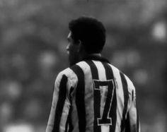 Garrincha, o anjo das pernas tortas  .#jorgenca
