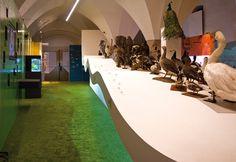 Naturmuseum, Bozen (I) - Gruppe Gut Gestaltung