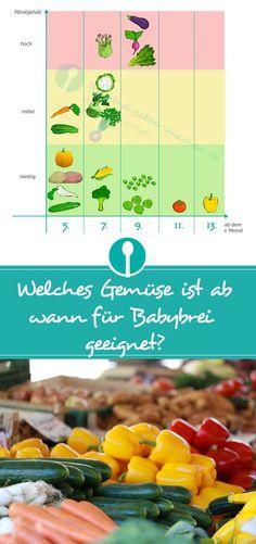 Welches Gemüse ist ab wann für Babybrei geeignet? Übersichtliche Infografik
