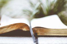 Toda la Biblia, tanto el Antiguo como el Nuevo Testamento, proclama a Cristo. Sus principales personajes, instituciones e historias lo prefiguraron.