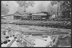 Sawmill in Erwin, West Virginia photographed by Marion Post Wolcott for the Office of War Information in 1938. Image via: http://en.wikipedia.org/wiki/Appalachia