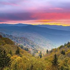 When did it become September?! That means #autumn will be here before we know it. One of our favorite fall destinations is the #SmokyMountains. It's not hard to see why... Who else is heading to the #mountains this fall? . . . . #ReservePigeonForge #ReserveGatlinburg #TravelOn #TravelMore #TravelGram #FriendsOfTheSmokies #MadeInTN #TennesseeTravels #Travel #VisitTennessee #InstaTennessee #Tennesseegram #PigeonForge #Gatlinburg