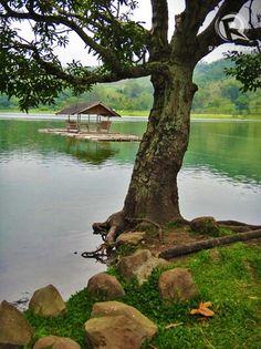 Lake Apo, Valencia, Bukidnon, Philippines