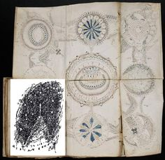 News Mash: Treasure your books with ex libris, Voynich Manuscript or no!