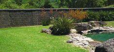 pool-and-brushwood-fencing-long1.jpg