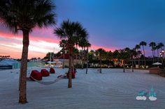 Grand Floridian Resort Photos   Grand Floridian Gals