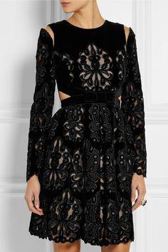 Erdem - Franzi laser-cut embroidered velvet dress from NET-A-PORTER