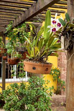 É melhor cultivar orquídeas em vasos de barro, que são mais porosos e drenam melhor a água, evitando o apodrecimento das raízes. Os modelos com furos na lateral, como o da foto, são indicados para locais com boa umidade. A ventilação é muito importante para um cultivo saudável, mas em excesso pode ser prejudicial. Fotografia: Edu Castello / Editora Globo. http://revistacasaejardim.globo.com/Casa-e-Jardim/Paisagismo/Plantas/Orquideas/noticia/2016/07/dicas-para-cuidar-das-orquideas.html
