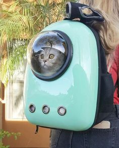"""""""As the astronaut cat contemplated this Earth, he was shocked from what he saw"""""""