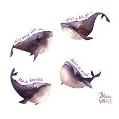 Walfische aus Iraville