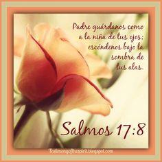 Padre guárdanos como a la niña de tus ojos; escóndenos bajo sombra de tus alas.  Salmos 17:8