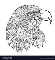 ausmalbilder falke   mandala ausmalen, vogel malvorlagen