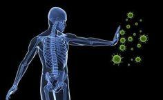 Come rigenerare il sistema immunitario in 72 ore