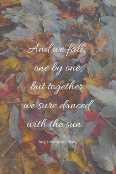 "Beautiful Autumn and Fall Quotes | Quotes for Autumn Lovers about the Fall Season Humanity Love Quote | a landscape picture of sunlit fall leaves | ""And we fall, one by one, but together we sure danced with the sun."" Angie Weiland-Crosby #quotes #autumnquotes #fallquotes #naturephotography #autumn #leaves #blogging #fall #soul #creativity #wellbeing #naturelovers #angieweilandcrosby #momsoulsoothers Leaf Quotes, Tree Quotes, Sun Quotes, Wisdom Quotes, End Of Life Quotes, Quotes Quotes, Love Nature Quotes, Change Quotes, Lyric Quotes"