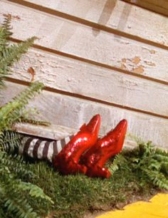 from The Wizard Of Oz.  ~ The house fell  smack on top of her, leaving only those wicked feet sticking out. Yeah, ~ Tina