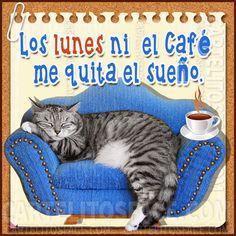 NI el cafe de los #Lunes ☕ Más cartelitos en www.cartelitosface.com