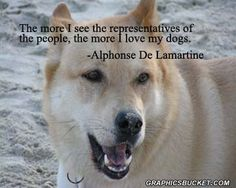 Dog Quotes image