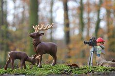 Wildlife documentation - PLAYMOBIL Collectors Club