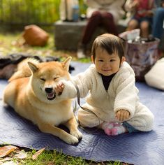 Smiling tot & her smiling Shiba Inu Animals For Kids, Animals And Pets, Baby Animals, Funny Animals, Cute Animals, Wild Animals, I Love Dogs, Cute Dogs, Japanese Dogs