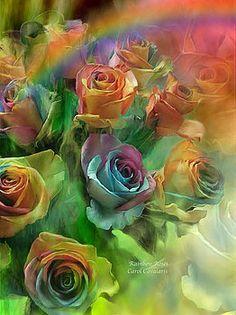 Carol Cavalaris - Rainbow Roses