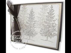 Dazzling Dryer Sheet Holiday Sparkle Card featuring Stampin' Up! products WOW - YouTube