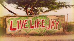 Live like jay chasing mavericks want to go see in Santa cruz Jay Moriarity, Chasing Mavericks Quotes, Surf Mar, Big Wave Surfing, Girl Surfing, Soul Surfer, Moriarty, Big Waves, Surfs Up